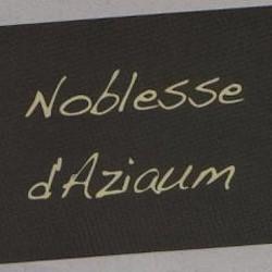 Noblesse d'Aziaum - Pascal Pibaleau  - Chenin 2009