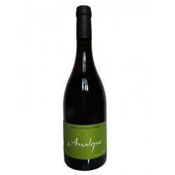 Analepse 2015 - Jean Christophe Comor - Les Terres Promises - Sainte Baume - Carignan blanc - vin vivant