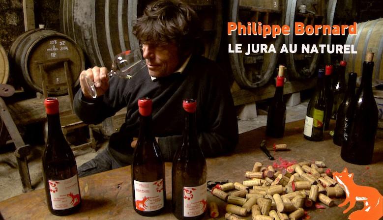 Les vins du Jura de Philippe Bornard chez QCQBM La Cave !