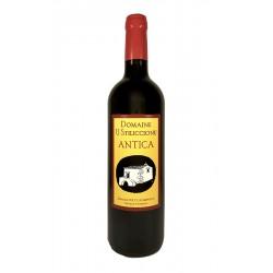 Antica 2015 - Sébastien Poly - Domaine U Stiliccionu - Corse - vin naturel