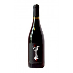 Pinot Noir - Xavier Benier - vin naturel