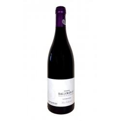 Les Echezots Bourgogne Marsannay 2014 - Gilles Ballorin