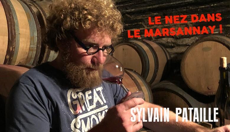 Les vins de Bourgogne de Sylvain Pataille. Marsannay